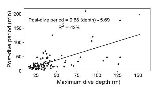 Ups And Downs Of Ocean Sunfish Migrations Beel Den Stormer