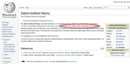 screen capture of sabre-toothed blenny wikipedia article