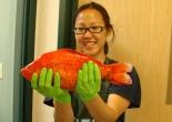 Giant goldfish from Lake Tahoe, California-Nevada USA