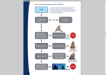 Page of PEW environmental guide to identification of shark fins